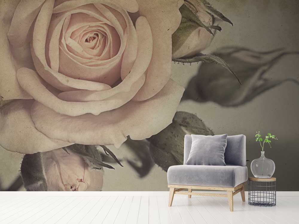 Our Eclectic Range Of Vintage Wallpapers Features Nature In Full Bloom Bouquets Flowers Soft Pastel Shades And Tropical Palm Leaves Wild
